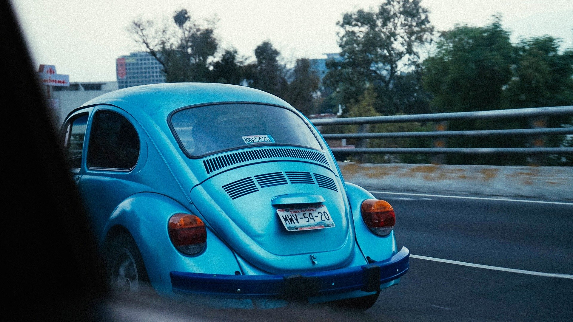 9 Tips for Aspiring Last Edition VW Beetle and Kitchen Appliances Collectors